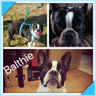 Balthie