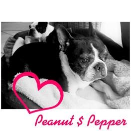 PepperPeter