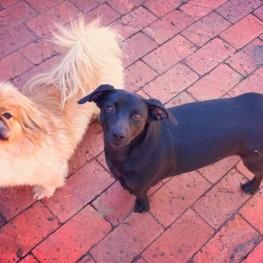 Tobi and Luna