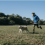 3 Great Reasons To Take Up Trail Running With Your Dog